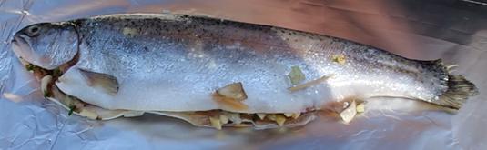 die Sachsengriller Grill Rezept BBQ Forelle